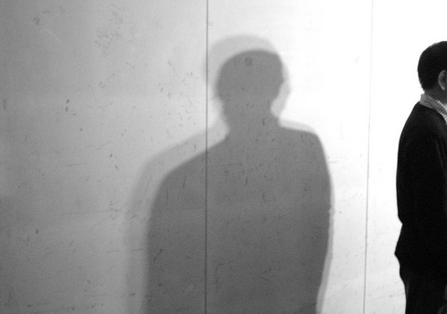 shadowed by niall